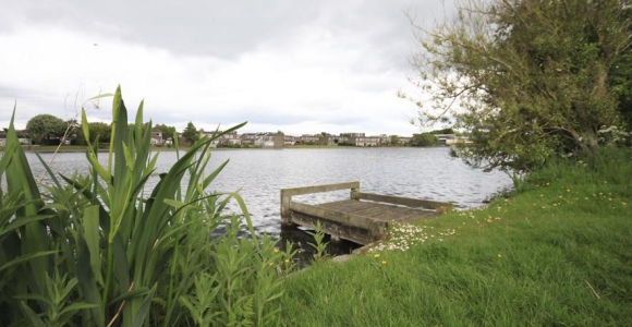 Friends Of Killingworth Lake Activities For Spring And Summer Friends Action North East