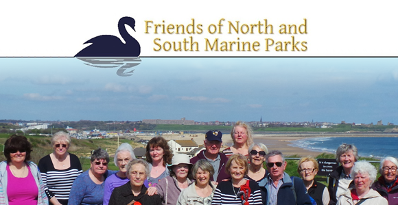 Friends of North and South Logo